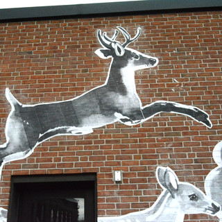 stag leaping.jpg