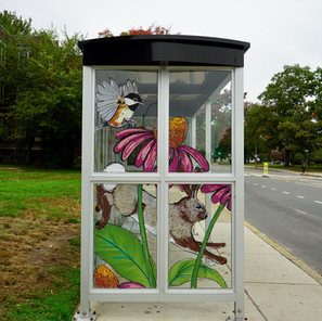 """The Commute,"" Bus Shelter, Arlington Flora and Fauna"