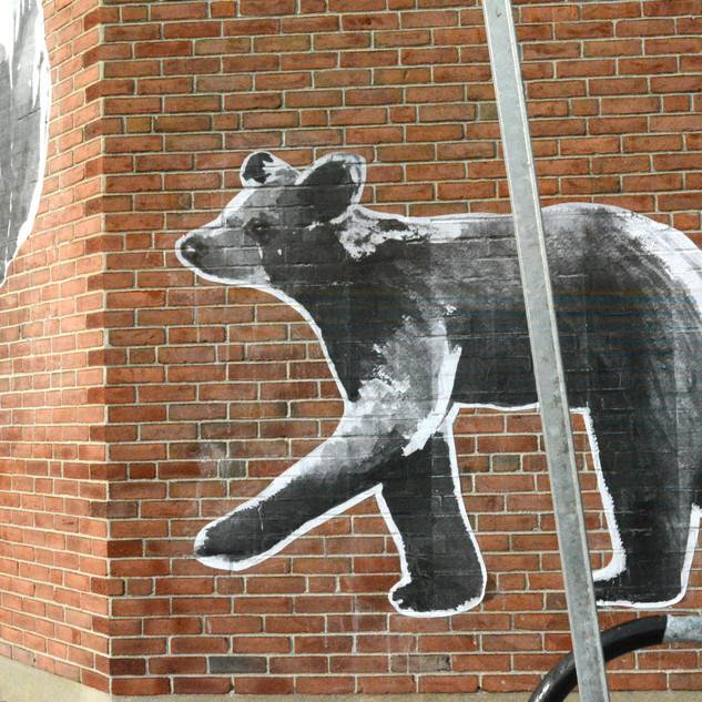 bear walking pole.jpg