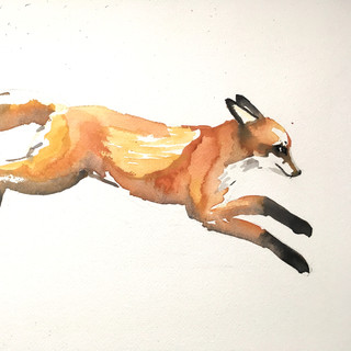 Leaping Fox Kit