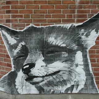 fox face closeup.jpg