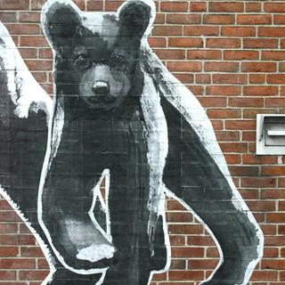 bear cub facing.jpg