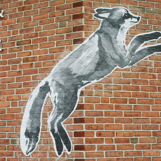 Fox leaping with sign.jpg