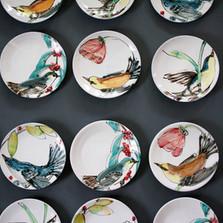 Set of Audubon Bird Plates