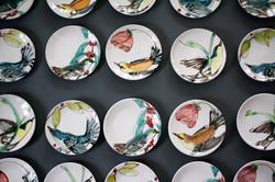 Set of 50 Audubon Plates