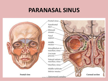 AN HOLISTIC APPROACH TO SINUSITIS                   and Art of Facial massage workshop