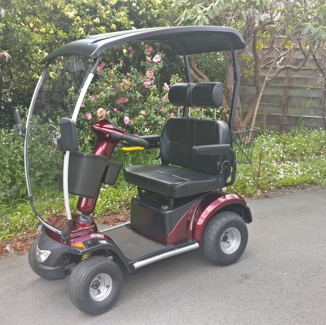 BLIZZARD L46 DUO 2 Seat Red Roof Version