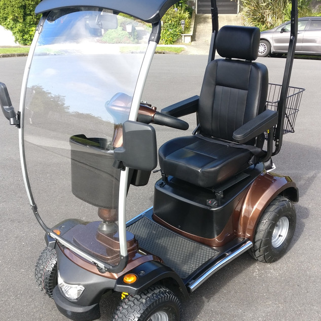 BLIZZARD L46 SOLO Single Seat Brown Roof