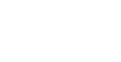 VNlogo2_smaller.png