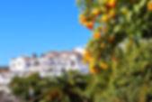 Активное путешествие в Андалусию и Гранаду