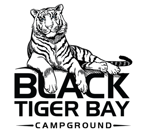 BlackTigerBayCampground Logo-01.png