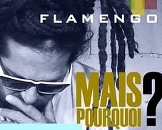 FLAMENGO POCHETTE ALBUM .png