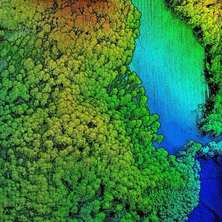 Plantation Forestry LIDAR Survey