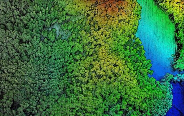 Plantation Forestry Pre-Harvest Analytics