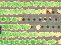 Pengenalan Dasar Tentang Analisis Pencitraan Multispectral Menggunakan Drone DJI dan Software Pix4D