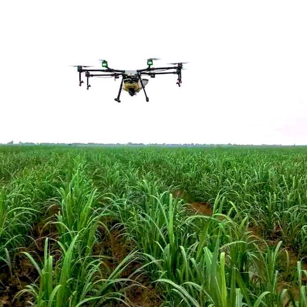 Drone Penyemprotan DJI Agras MG-1P - Teb