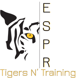 Tigers N Training Logo Digital .png
