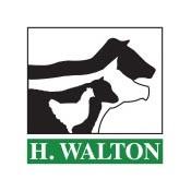 H Walton