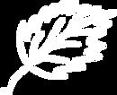 Logo_Birkeblatt.png
