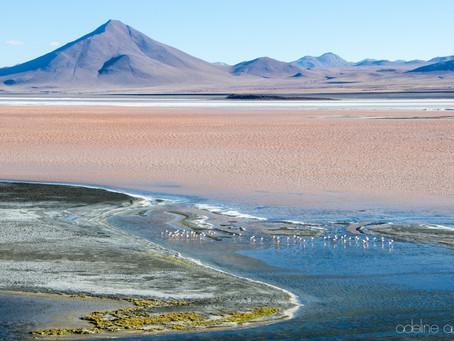 Bienvenido en Bolivia