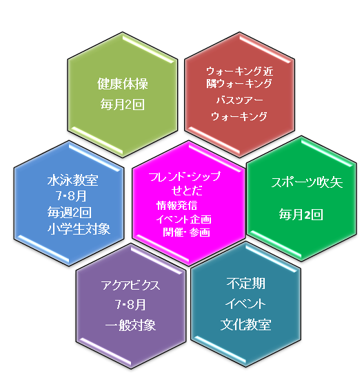 FSS 活動 図.png