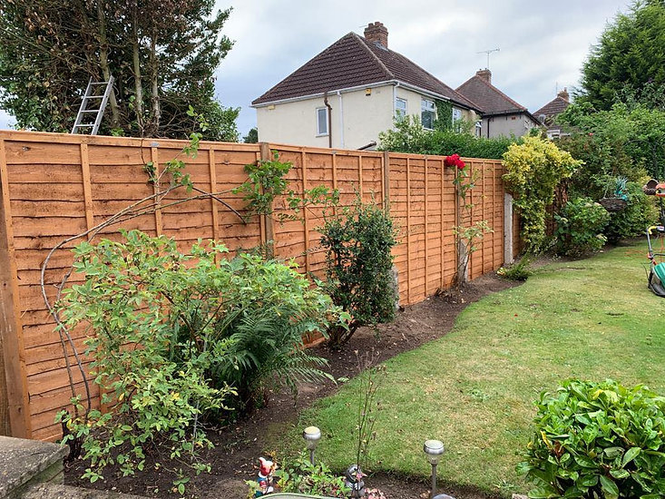 rear garden lawn with wooden fence bordered by trees and bushes.jpg