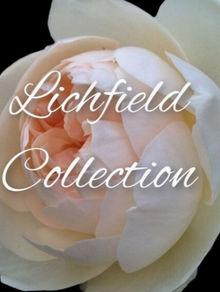 Lichfield Collection