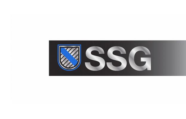 DLP_LogoGallery_SSG_2013