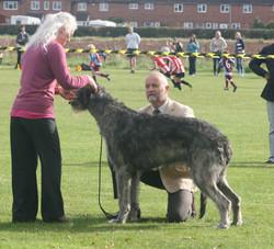 Tebbutt's Caredig Caredog with Mary McBryde