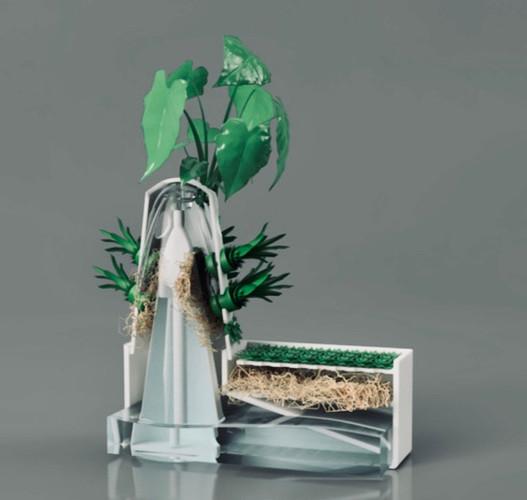 Hydroponics Design