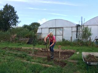 Lucy digging.JPG