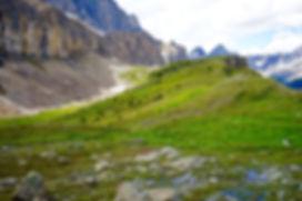 S Molar Pass.jpg