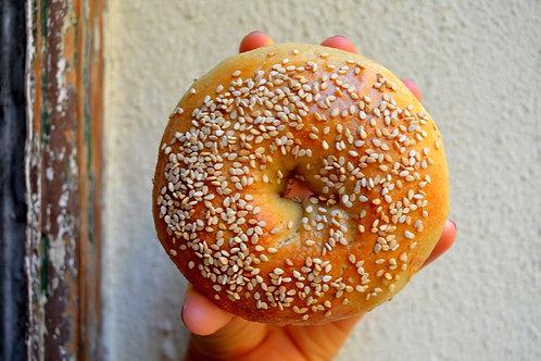 Sesame Seed // Semilla de Sésamo