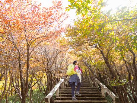 【写真教室】奈良の山の奥は、紅葉の始まり