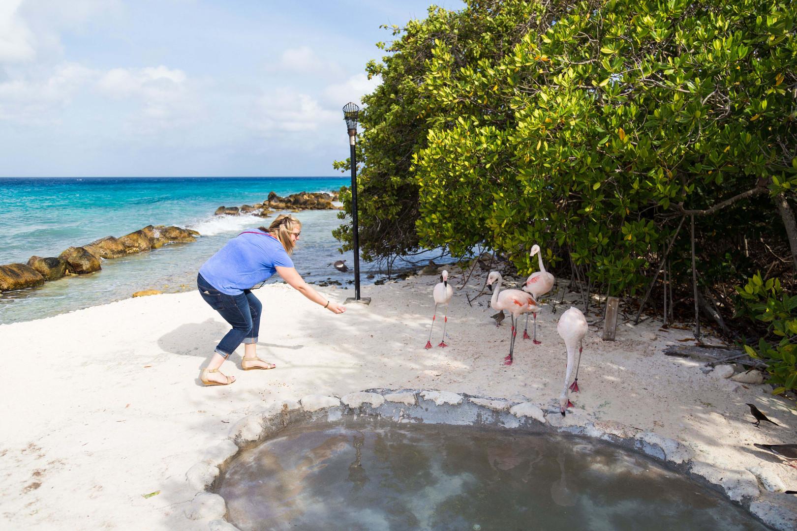 Aruba_Renaissance_Island_3.jpeg