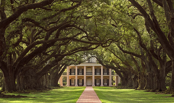 These historic Southern plantations are worth a visit.