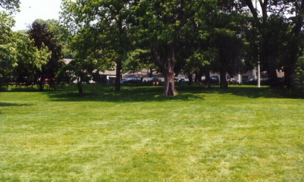 Stony Brook Village Center Gardens
