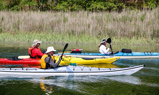 Stony Brook Harbor Kayaking