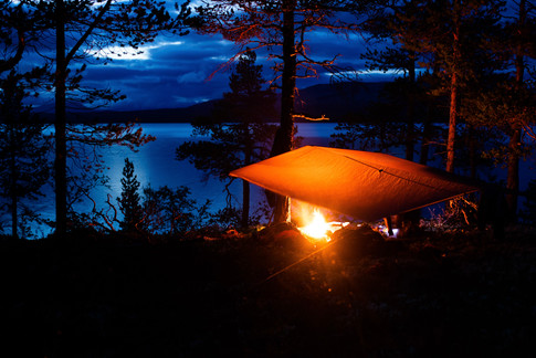Villmarkstur Nordic Wildlife 01.jpg