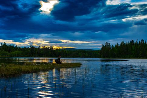 Villmarkstur Nordic Wildlife