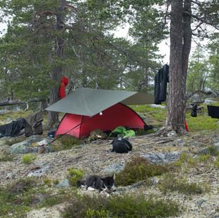 Tarp over teltet sparer teltet for mye regn. Man får også en uteplass selv om det bøtter ned. Det veier opp for de 700g duken veier.