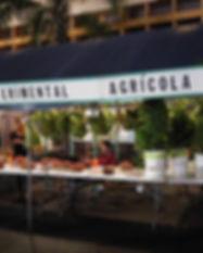 estacion experimental agricola corozal.j