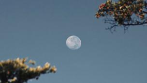 Ritual de Lua Cheia sob o signo de Virgem em 27/02/2021