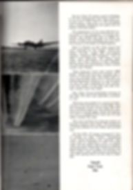 page 43.jpg