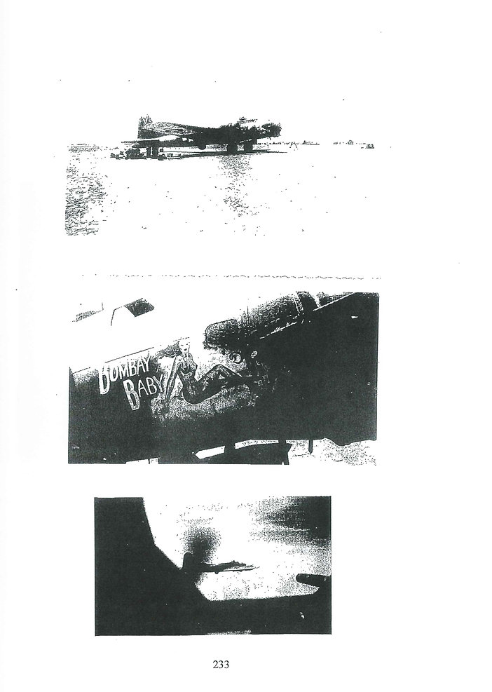 772nd page 233.jpg