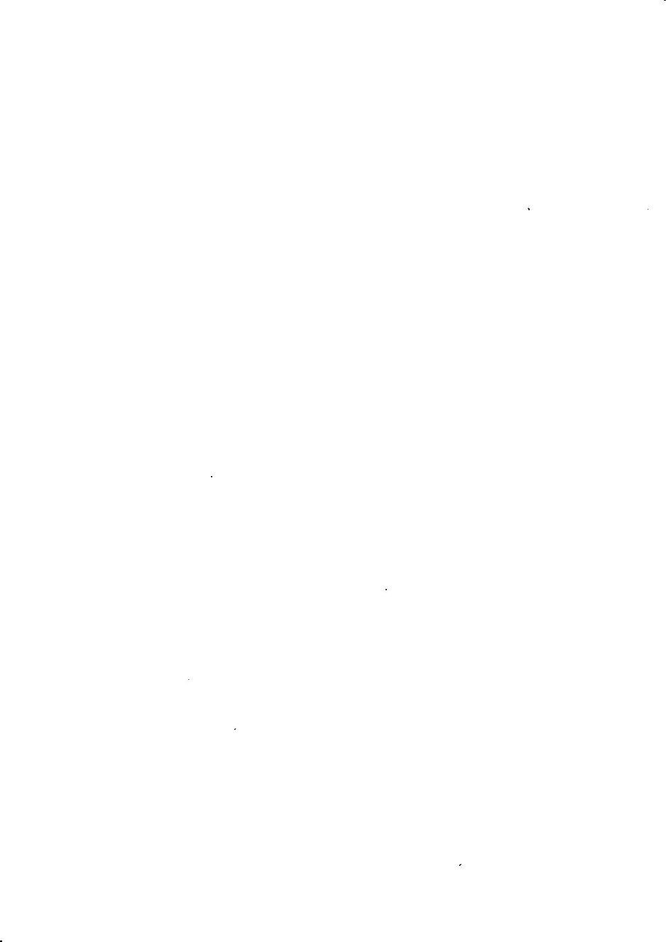 白紙.jpg