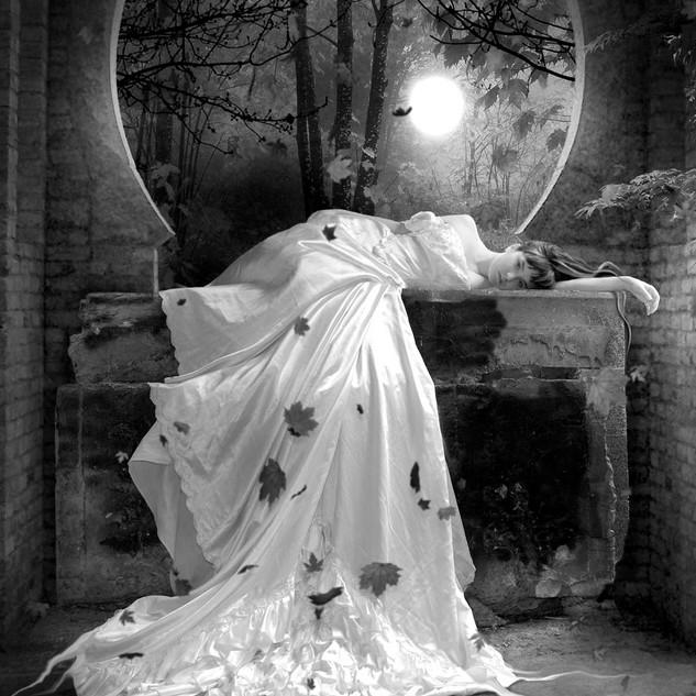 Solo pour femme morte  - photo @ElenaDudina