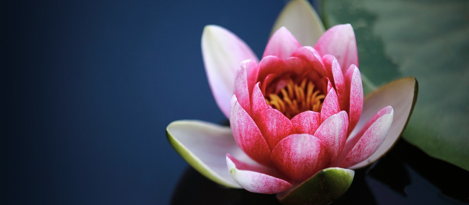 WHAT IS TANTRA? HOW CAN I EXPERIENCE IT THROUGH A MASSAGE?