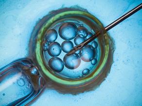 Cinco dúvidas sobre reprodução assistida