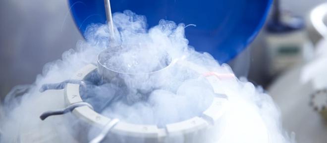 Congelamento de óvulos: procura pela técnica tem aumentado